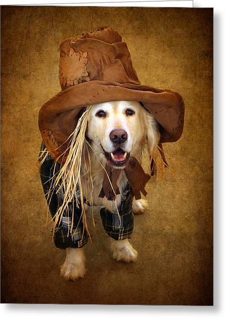Golden Retriever Digital Greeting Cards - Trick or Treat Greeting Card by Jessica Jenney