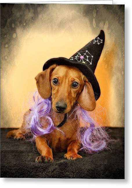 Best Friend Greeting Cards - Trick or Treat Greeting Card by Susan Candelario