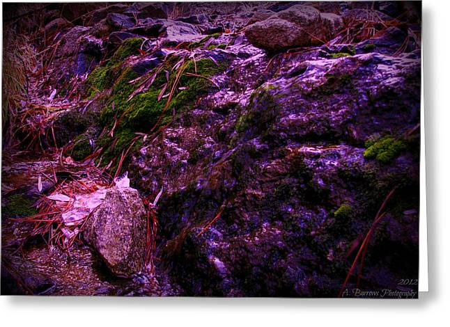 Prescott Greeting Cards - Trickling Down the Rocks Greeting Card by Aaron Burrows