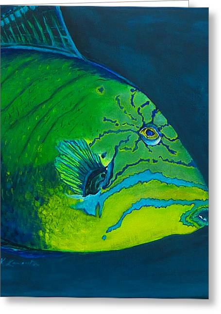 Triggerfish Paintings Greeting Cards - Triggerfish Greeting Card by Kevin Lancaster