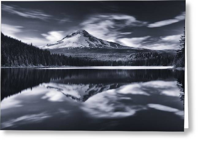 Mount Photographs Greeting Cards - Trillium Escape Monochrome Greeting Card by Darren  White