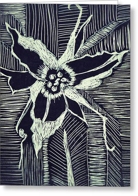 Stamen Drawings Greeting Cards - Trillium in Black and White Greeting Card by Patricia Januszkiewicz