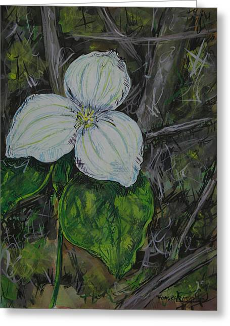 Naturalistic Greeting Cards - Trillium1 3013 Greeting Card by Thomas Griffith