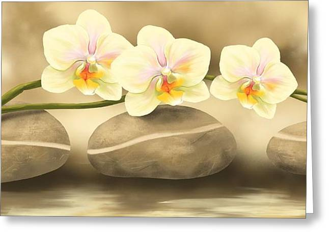 Orchid Greeting Cards - Trilogy Greeting Card by Veronica Minozzi
