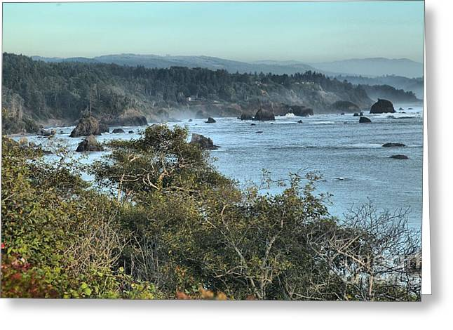 Trinidad Beach Landscape Greeting Card by Adam Jewell