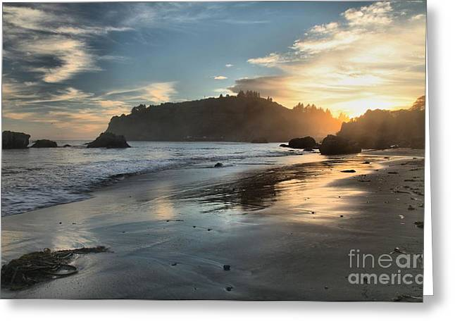 Foggy Beach Greeting Cards - Trinidad Beach Reflections Greeting Card by Adam Jewell