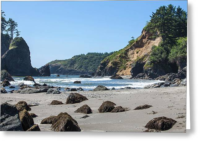 Trinidad, California Greeting Card by Michael Qualls