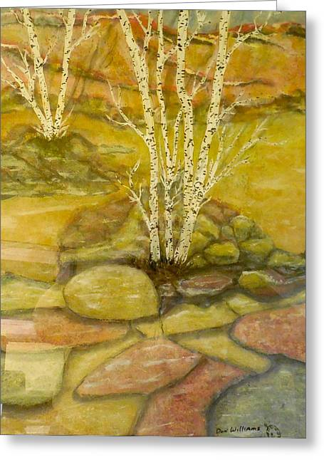 Trio Mixed Media Greeting Cards - Trio of White Birch Greeting Card by Don Williams