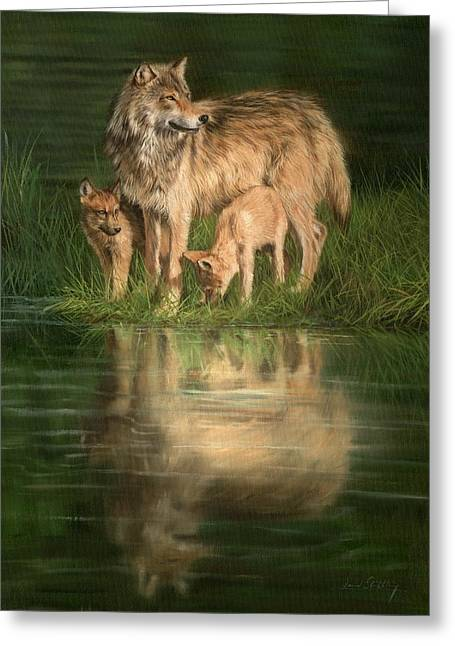 Trio Of Wolves Greeting Card by David Stribbling