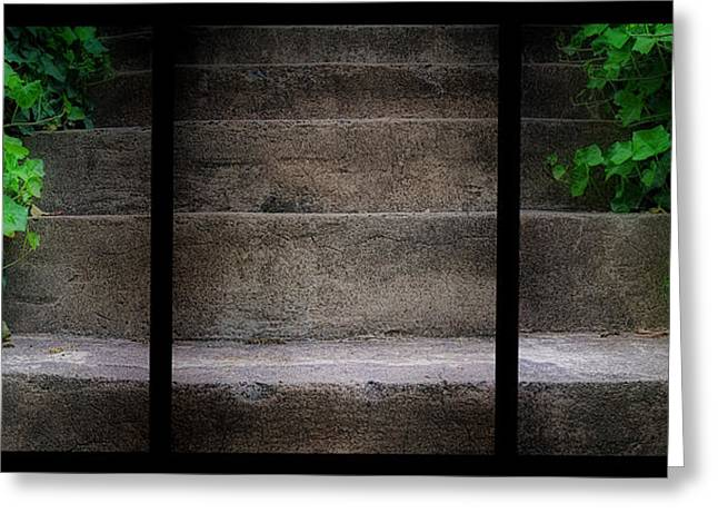 Stepping Stones Greeting Cards - Triptych Ivy Steps Greeting Card by Steve Hurt