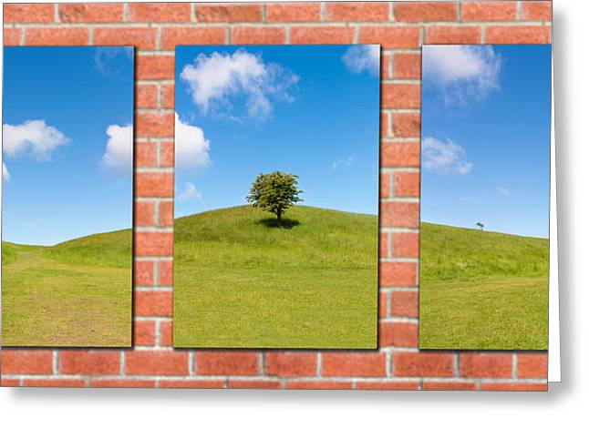 Phoenix Framed Prints Greeting Cards - Triptych of Nature Greeting Card by Semmick Photo