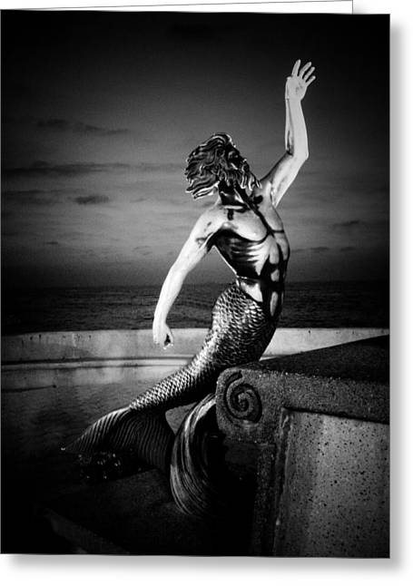 Greek Sculpture Greeting Cards - Triton Gris Greeting Card by Natasha Marco