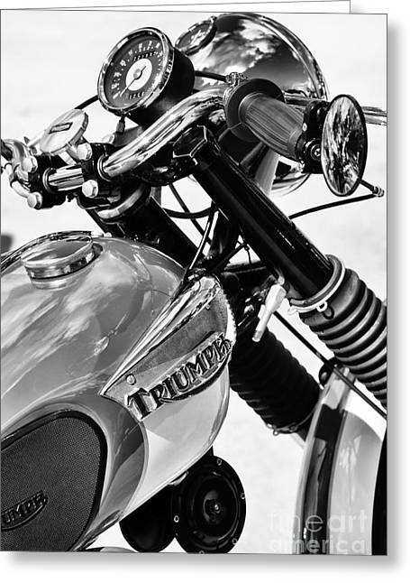 Gas Tank Greeting Cards - Triumph Tiger Monochrome Greeting Card by Tim Gainey