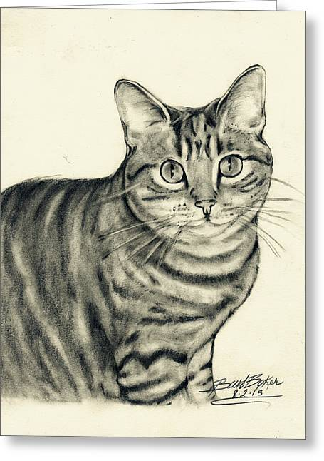 Drawings Of Cats Greeting Cards - Trixie Greeting Card by Barb Baker