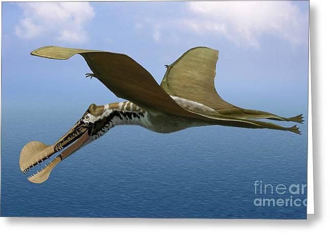 Zoology Digital Art Greeting Cards - Tropeognathus Mesembrinus, A Large Greeting Card by Sergey Krasovskiy