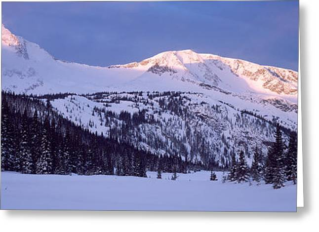 Tree Lines Greeting Cards - Trophy Mountain British Columbia Canada Greeting Card by Panoramic Images