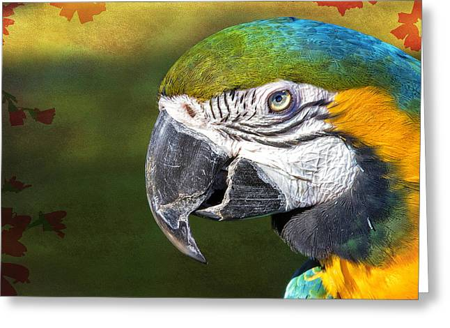 Blue Macaws Greeting Cards - Tropic Macaw Greeting Card by Bill Tiepelman