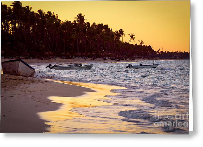 Surf Lifestyle Greeting Cards - Tropical beach at sunset Greeting Card by Elena Elisseeva