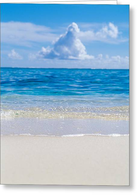 Horizon Over Water Greeting Cards - Tropical Beach With Blue Skies Greeting Card by Panoramic Images