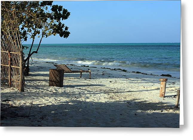 West Africa Greeting Cards - Tropical Beach - Zanzibar Greeting Card by Aidan Moran
