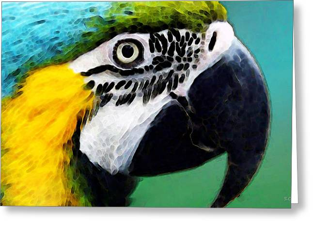 Macaw Art Greeting Cards - Tropical Bird - Colorful Macaw Greeting Card by Sharon Cummings