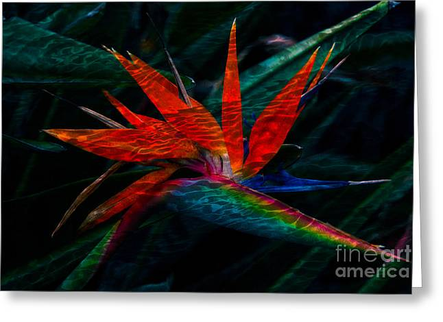 Flowers Greeting Cards - Tropical Bird of Paradise Greeting Card by Susanne Van Hulst