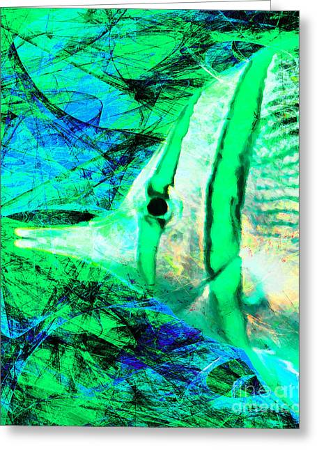 Snorkel Digital Greeting Cards - Tropical Fish 5D24879p145 Greeting Card by Wingsdomain Art and Photography