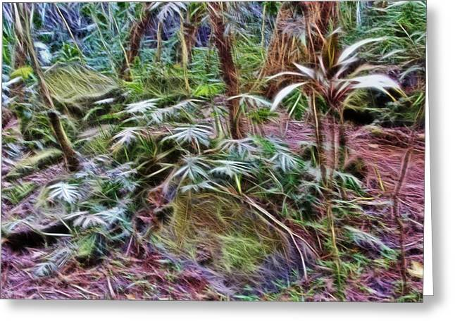 Forest Floor Greeting Cards - Tropical Forest Floor Greeting Card by Linda Phelps