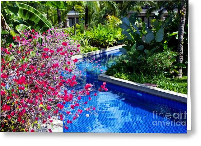 Water Garden Digital Art Greeting Cards - Tropical Garden around Pool Greeting Card by Kaye Menner