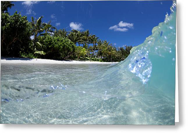 Sean Greeting Cards - Tropical Glass Greeting Card by Sean Davey