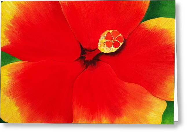 Lisa Bentley Greeting Cards - Tropical hibiscus painting Greeting Card by Lisa Bentley