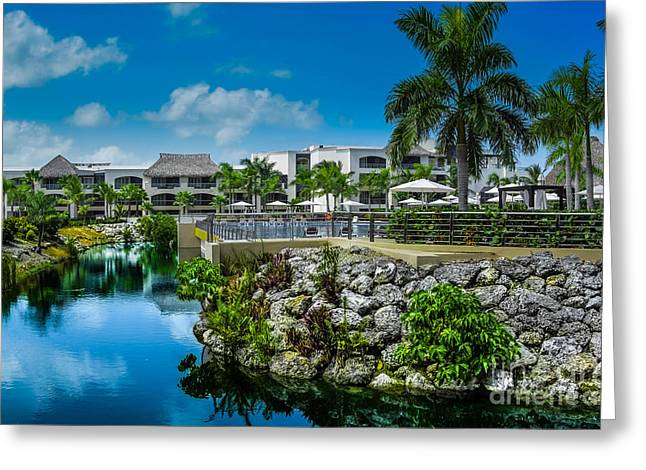Tropical Landscape Water Way Greeting Card by Gary Keesler