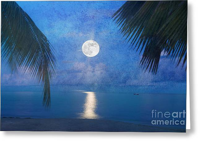 Moonglow Greeting Cards - Tropical Moonglow Greeting Card by Betty LaRue