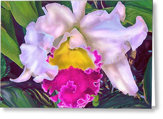 Cattleya Orchid Greeting Cards - Tropical Orchid Greeting Card by Jane Schnetlage