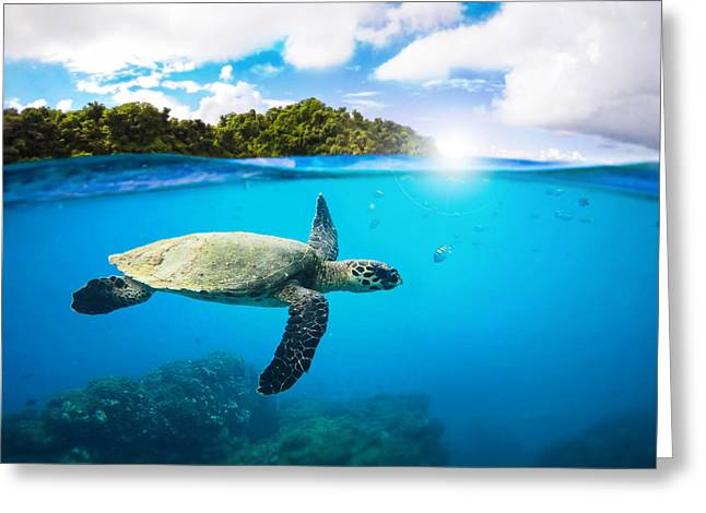 Snorkeling Greeting Cards - Tropical Paradise Greeting Card by Nicklas Gustafsson