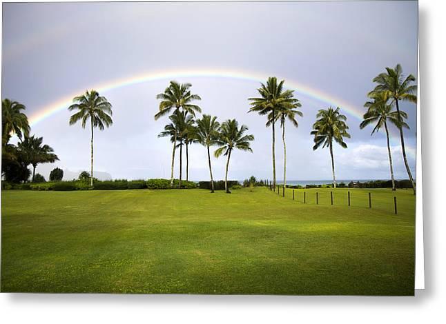 Double Rainbow Greeting Cards - Tropical Rainbow Greeting Card by Saya Studios