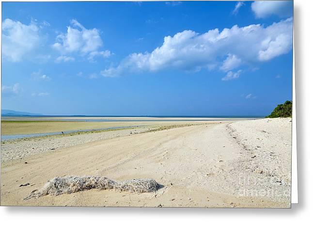 China Beach Greeting Cards - Tropical Sandy Beach Greeting Card by Kennerth and Birgitta Kullman