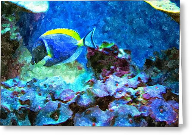 Entryway Paintings Greeting Cards - Tropical Seas Powder Blue Tang  Greeting Card by Rosemarie E Seppala
