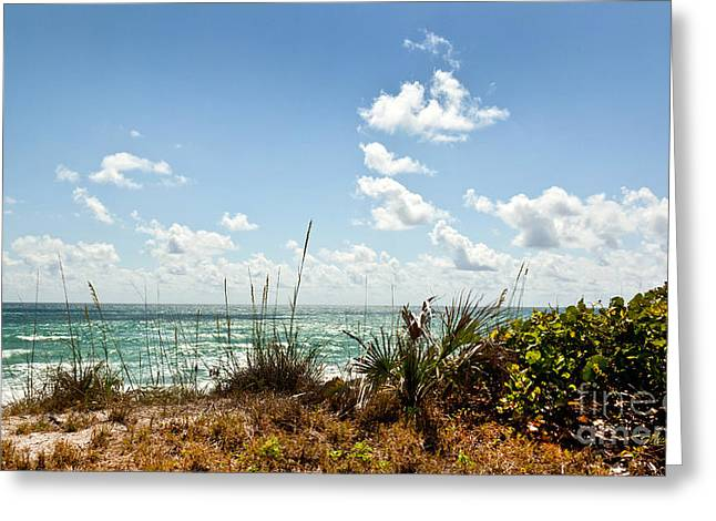 Florida East Coast Greeting Cards - Tropical Shore Greeting Card by Michelle Wiarda