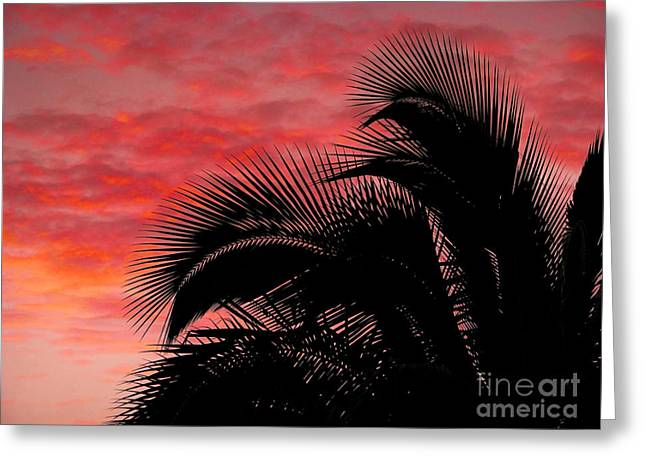 Tropical Silhouette Greeting Card by Ellen Cotton