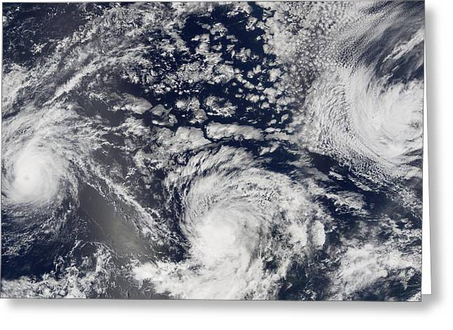 Devastated Greeting Cards - Tropical storms and hurricanes, 2005 Greeting Card by Science Photo Library