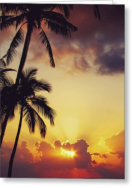Island Imagination Greeting Cards - Tropical Sunset Greeting Card by Jenny Rainbow