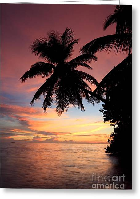Tropical Beach Greeting Cards - Tropical sunset Greeting Card by Matteo Colombo