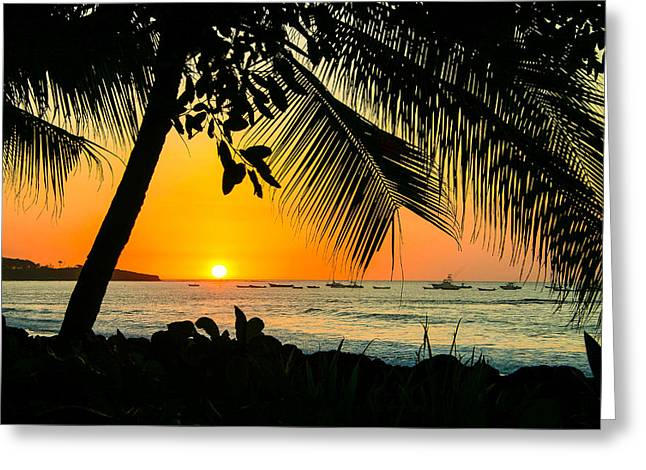 Ocean Photography Pyrography Greeting Cards - Tropical Sunset Greeting Card by Menachem Ganon