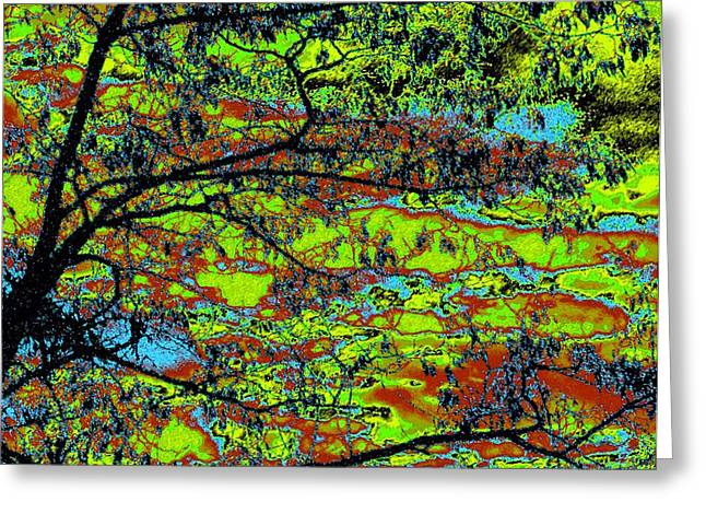 Intrigue Greeting Cards - Tropical Swamp Greeting Card by Will Borden