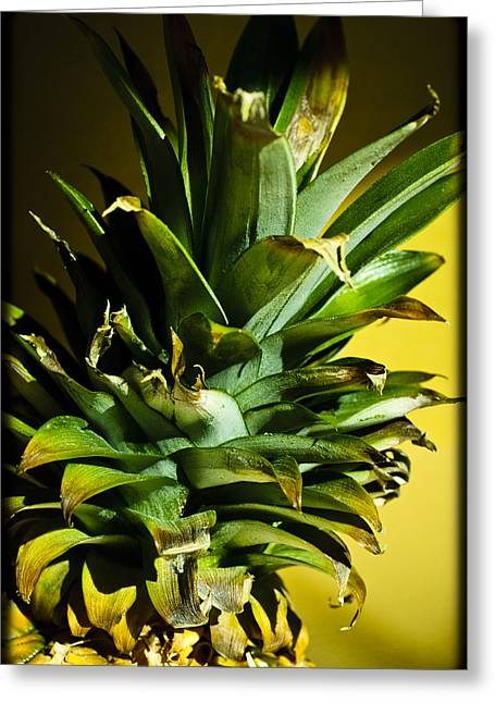 Corner Kitchen Greeting Cards - Tropical Top Greeting Card by Christi Kraft