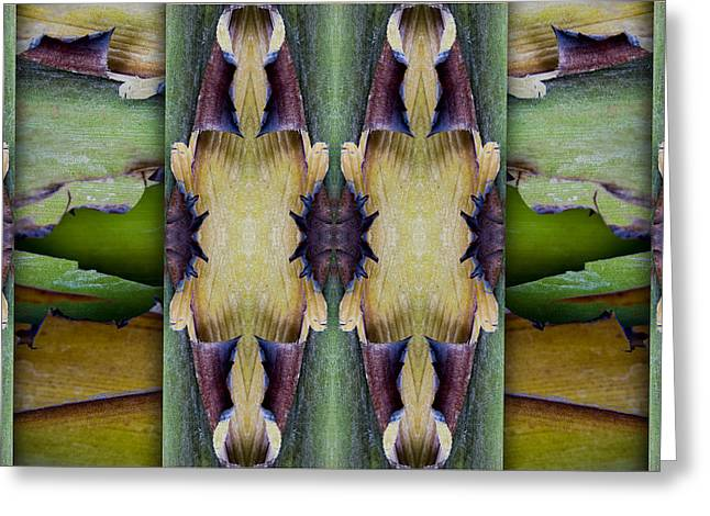 Frond Greeting Cards - Tropical Two Greeting Card by Carol Leigh
