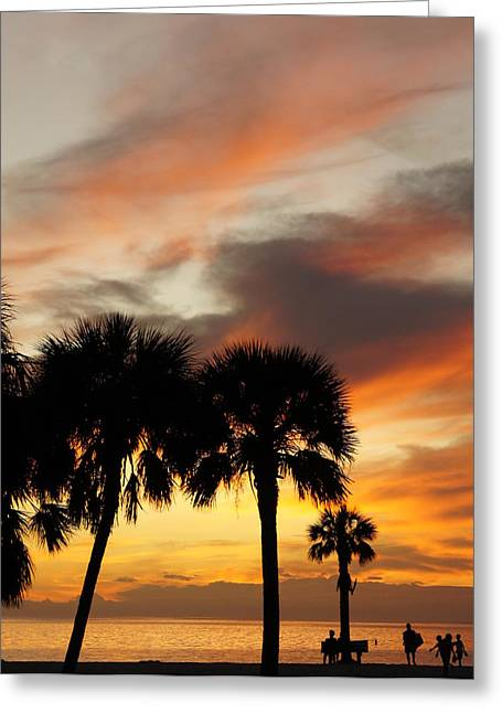 Laurie Perry Greeting Cards - Tropical Vacation Greeting Card by Laurie Perry