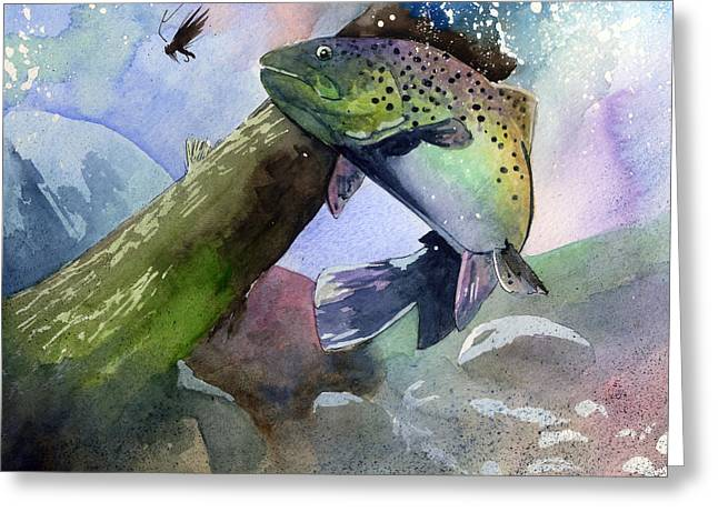 Rainbow Trout Greeting Cards - Trout and Fly Greeting Card by Sean Parnell