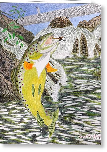 Trout Fishing Drawings Greeting Cards - Trout Stream In May Greeting Card by Gerald Strine